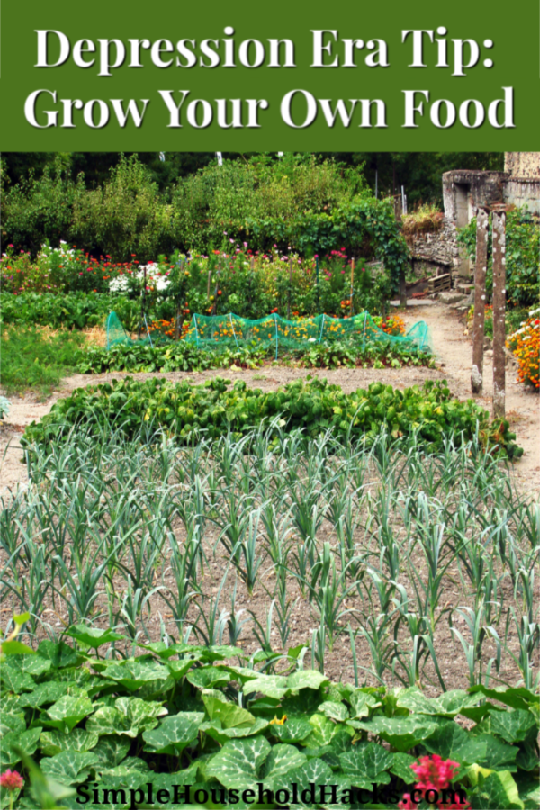 Depression Era Tip: Grow Your Own Food including a vegetable garden, herbs, fruit trees, and chickens.